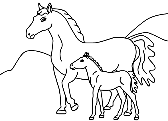 Horse Coloring Pages | 424x589